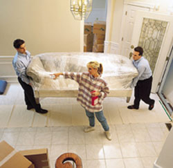 Sarasota Movers