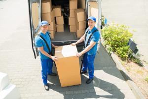 Mover Company